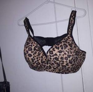Other - 42 C leopard bra